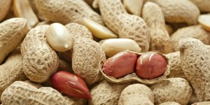 Peeled peanut andl peanuts in shell, studio shot